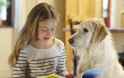 Dogs and Reading: an Alternative Method to Boost Confidence